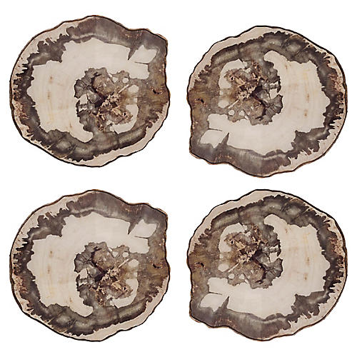 S/4 Petrified Coasters, Natural/Multi
