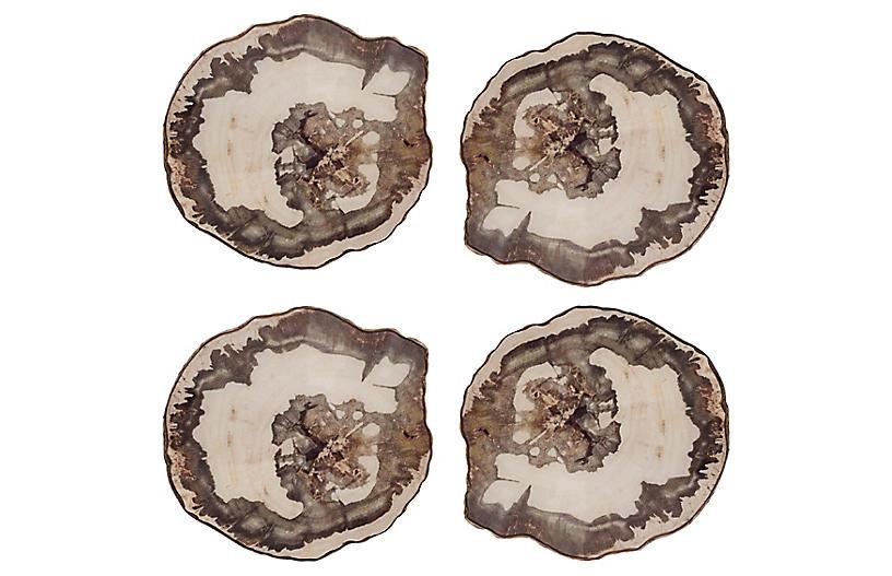 S/4 Petrified Coasters, Natural/Multi