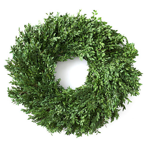 "24"" Boxwood Wreath, Preserved"
