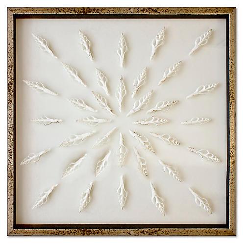 Framed Spindle Shells