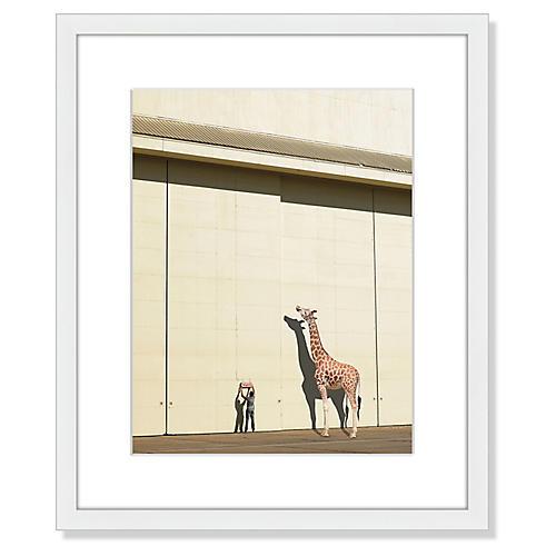 Curious Giraffe, Richard Newstead