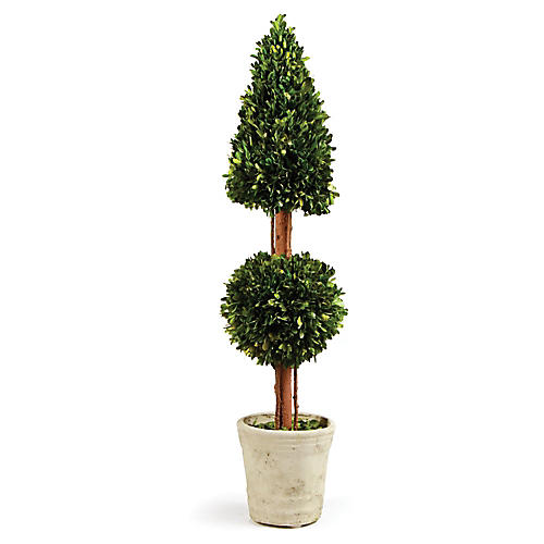 """36"""" Tall Cone & Ball Preserved Topiary, Green"""