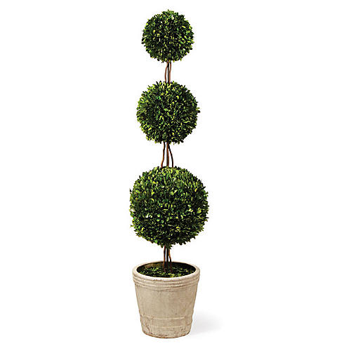 Triple-Ball Preserved Topiary, Green/Cream