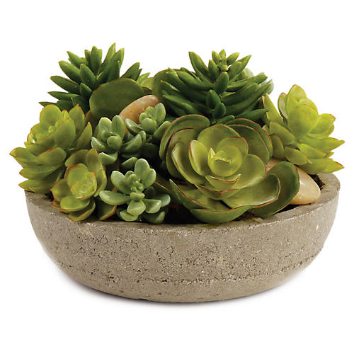 "7"" Mixed Succulents Arrangement, Faux"