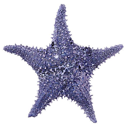 West Bahamian Starfish, Blue