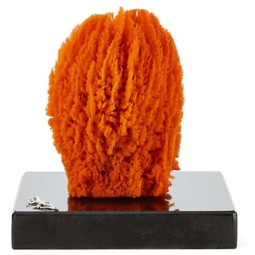 Orange Sponge on Marble & SS Base