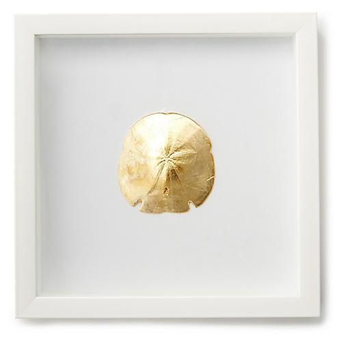 Gold Sand Dollar