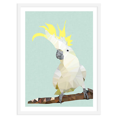 Studio Cockatoo, Cocky