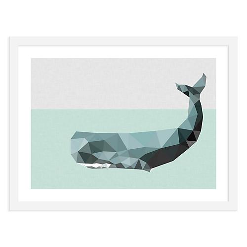 Whale, Studio Cockatoo