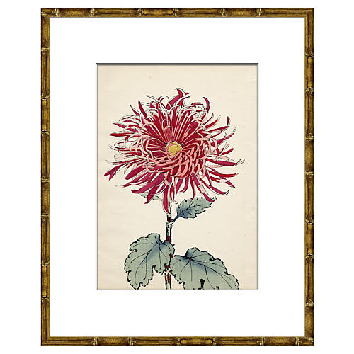 Asian Flower I