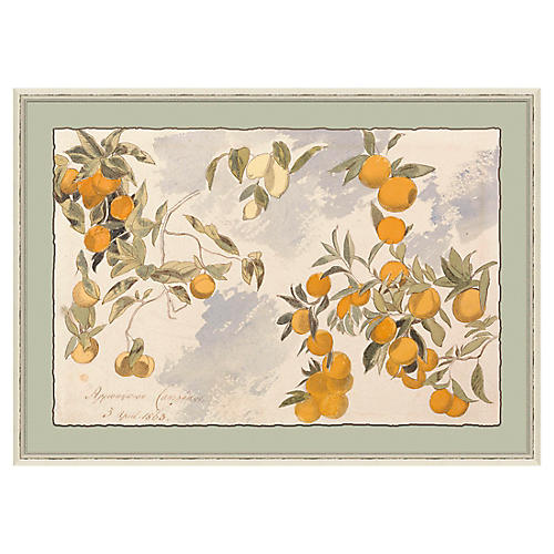 Orange Tree in Beige Frame