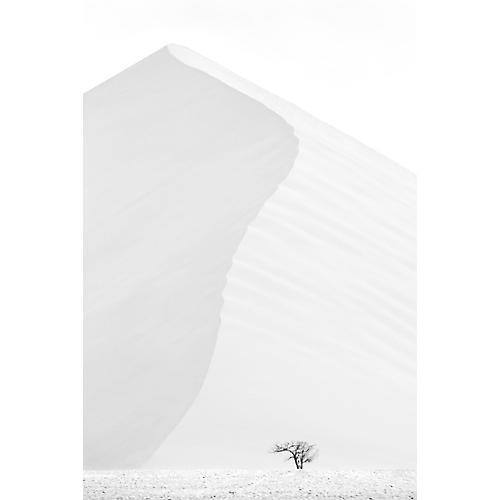 Drew Doggett, Desert Rising