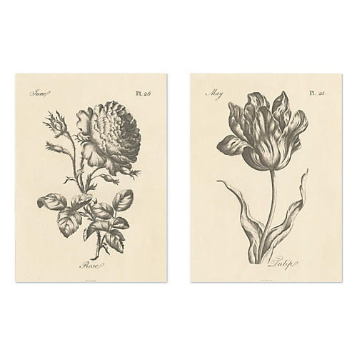 Inked Flowers V Diptych