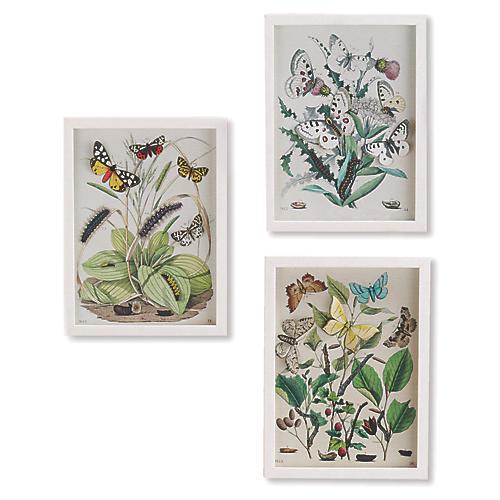 Garden Butterfly Wall Art, Multi