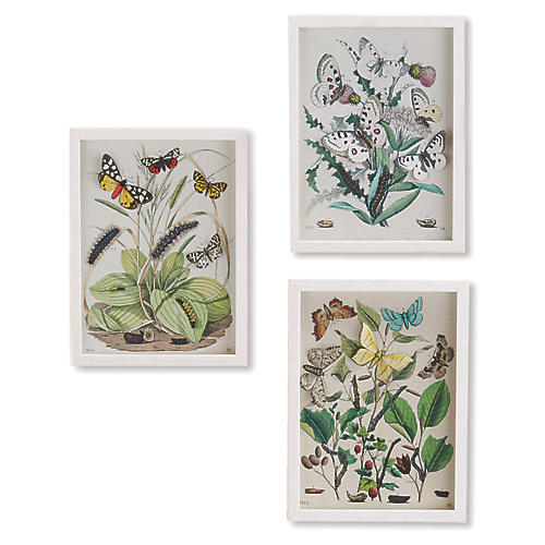 Garden Butterfly Wall Art, Multi