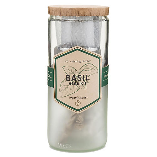 Eco Herb Kit, Basil