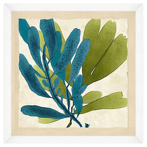 Green and Teal Seaweed Crop II