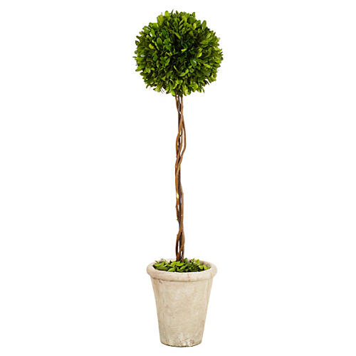 "29"" Boxwood Ball Topiary in Pot, Faux"