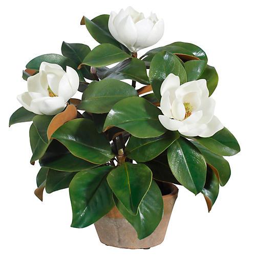 "15"" Garden Magnolia, Faux"