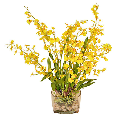 "28"" Oncidiums in Rocks, Yellow"