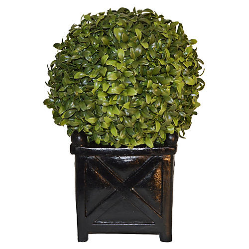 """13"""" Boxwood Ball in Planter, Faux"""