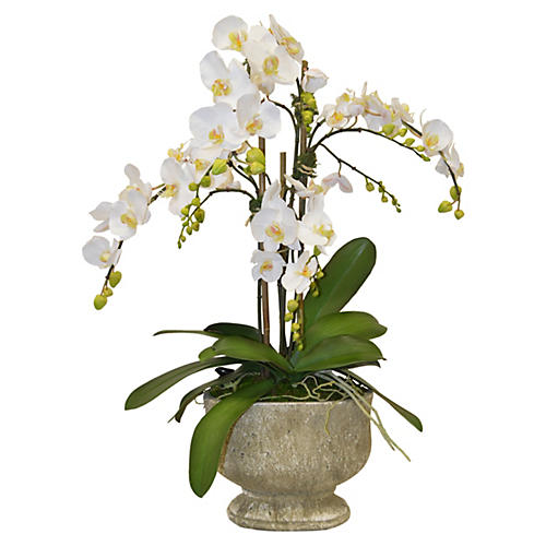 "34"" Orchids Arrangement in Urn, Faux"