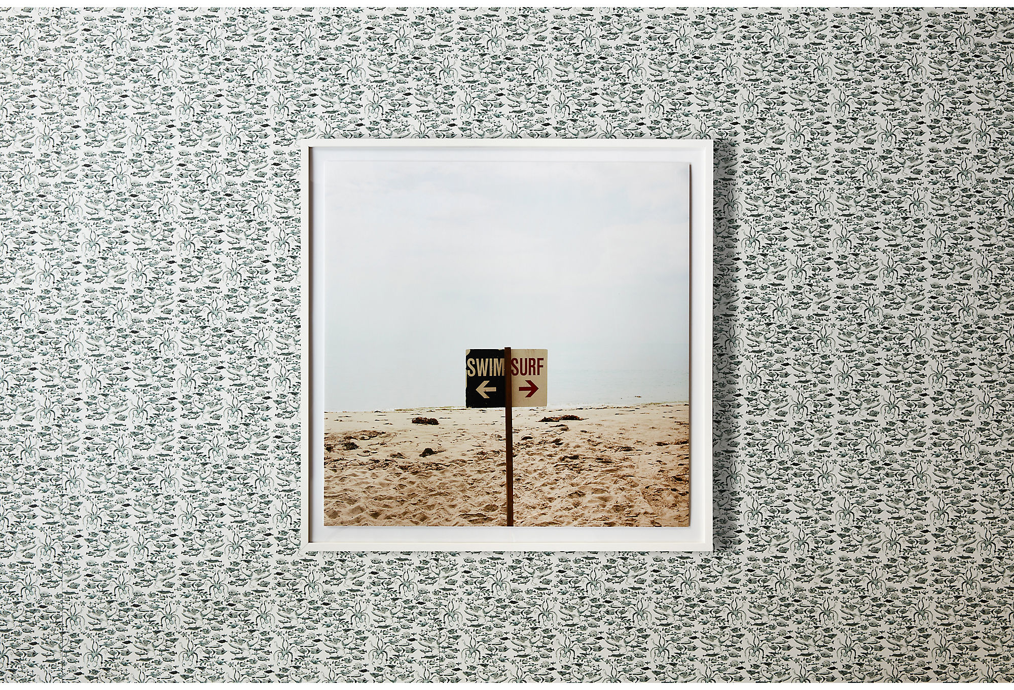 Fish Wallpaper by Vikki Chu; the framed photo is Swim/Surf by Christine Flynn.