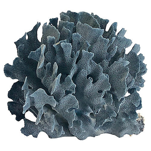 Natural Blue Coral Fragment