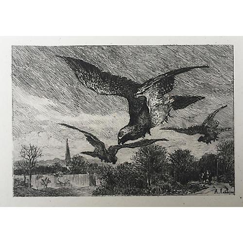 19th-C. French Bird Etching by Lançon