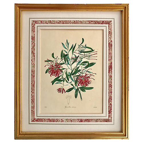 19th-C. Floral Etching