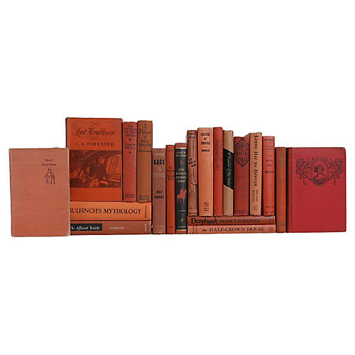 Midcentury Cinnamon Book Set, S/20