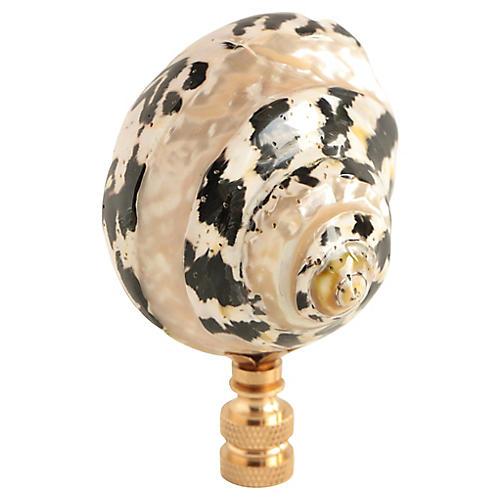 Banded Zebra Shell Lamp Finial