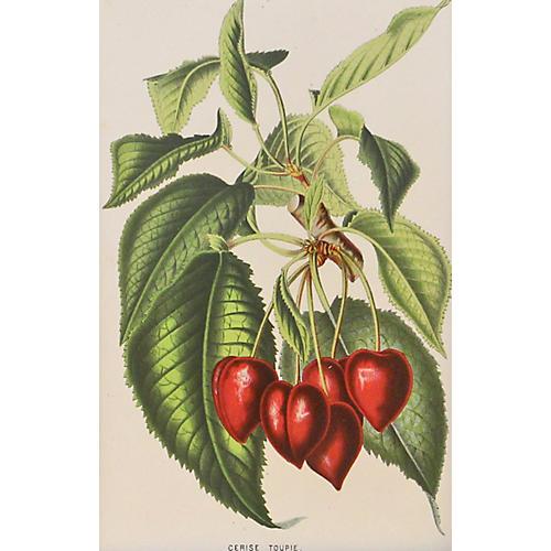 Red Cherries w/ Stem, C. 1860