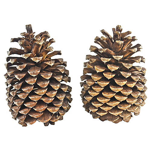 Oversize Natural Pine Cone, Pair