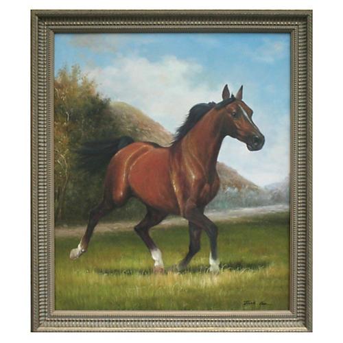 Arabian Horse by Jack Lee