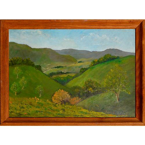 Mid Century Monterey Ranch Landscape