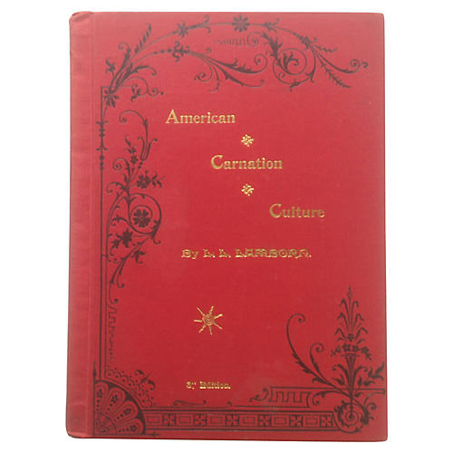American Carnation Culture, 1892