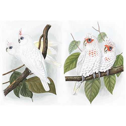 Male & Female Cockatoo Watercolors, Pair