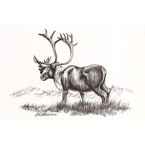 Caribou Lithograph, 1972