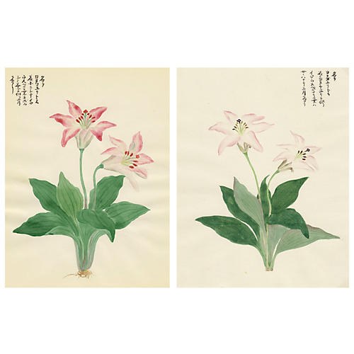 Japanese Pink Lily Watercolors, Pair