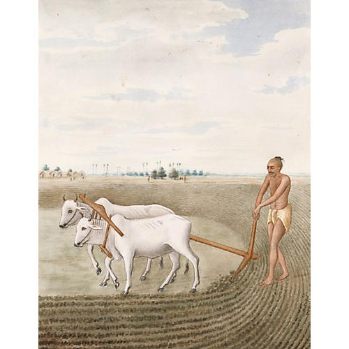 Watercolor of Indian Farmer, C. 1890