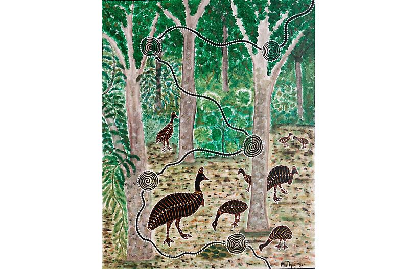 Australian Aboriginal Cassowaries