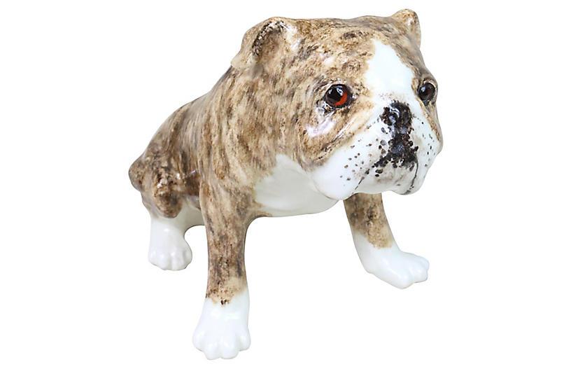 Winstanley Bull Dog