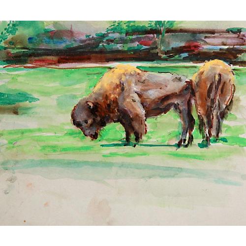 Buffalo by Marshall Goodman