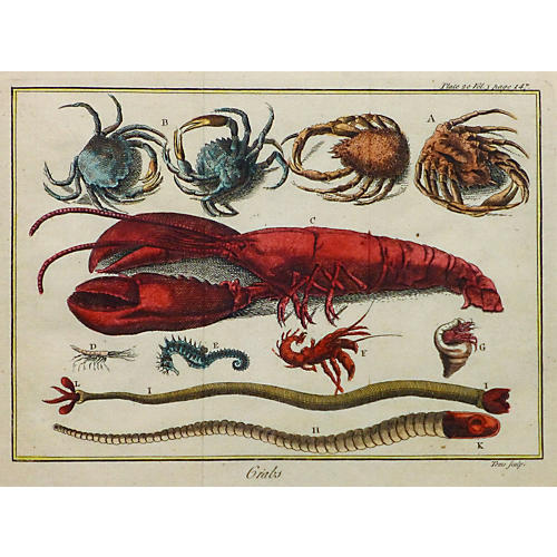 Crab and Lobster, C. 1780