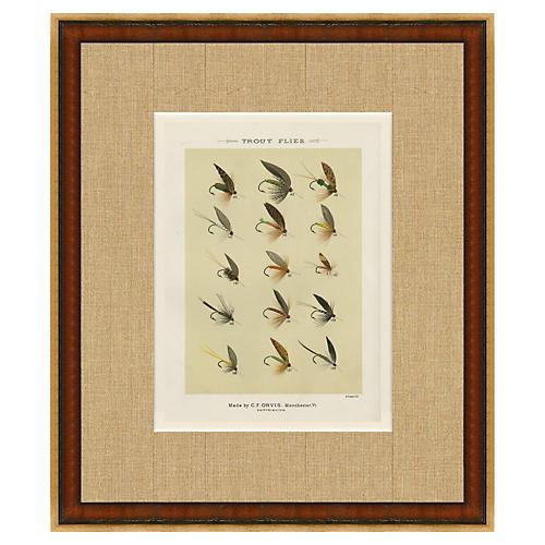 1890s Orvis Trout Flies Print