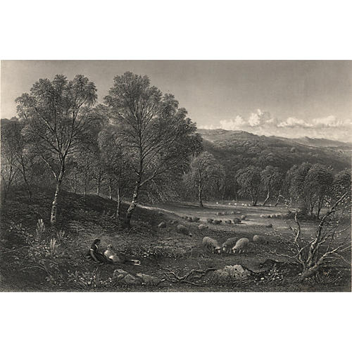 Sheep Pastures in North Wales, 1863