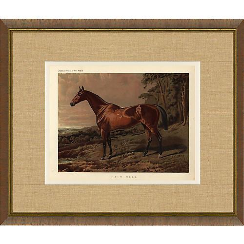Samuel Sidney Fair Nell Horse Print 1879