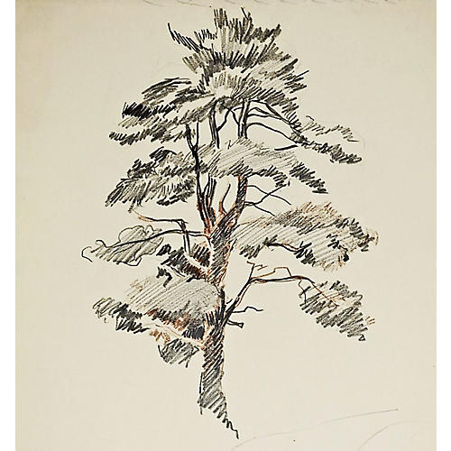 Tree Study by George Baer