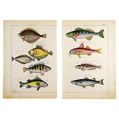 Colorful Fish Woodcut Prints, Pair